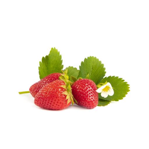 Furore aardbeien van aardbeienplant