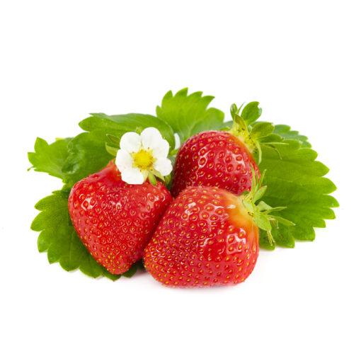 Favori aardbeien van aardbeienplanten