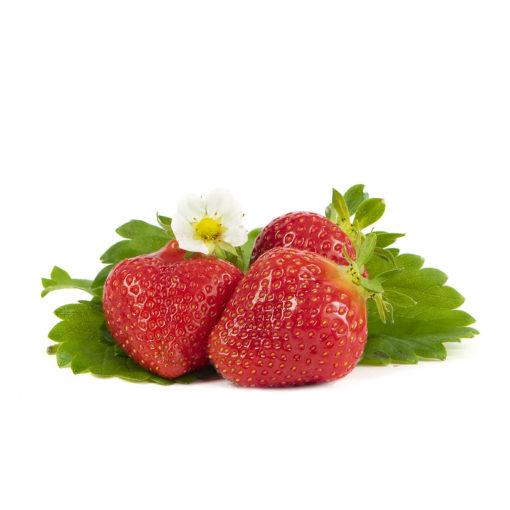 Favori aardbeien van aardbeiplanten