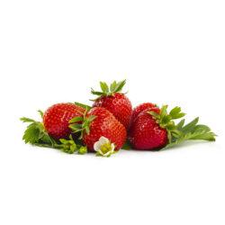 Rumba aardbei van aardbeienplant