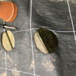Plantgaten zonder rafels in worteldoek maken